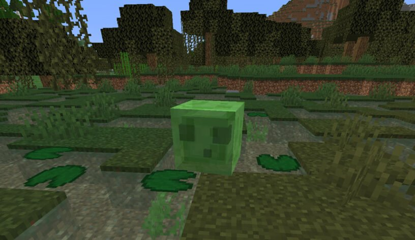 Slime in swamp biome in Minecraft