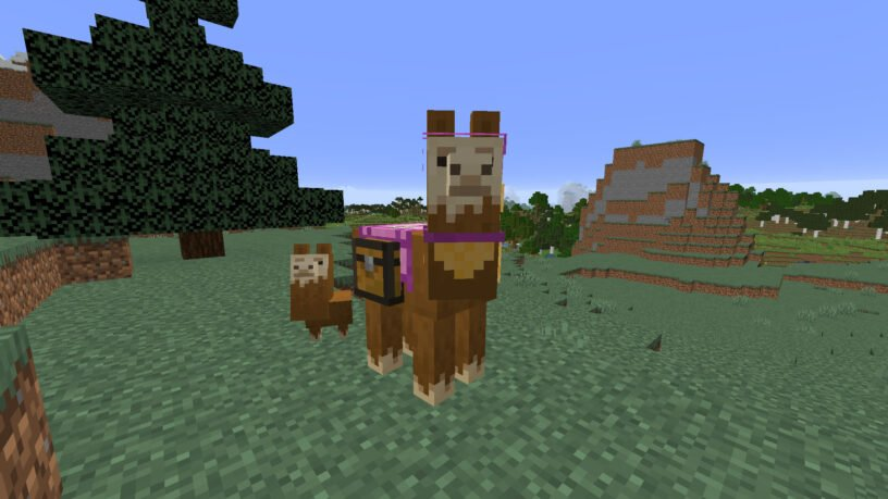 Llama wearing a pink carpet in Minecraft
