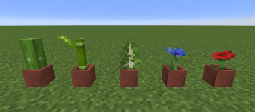 Flower Pot plant examples